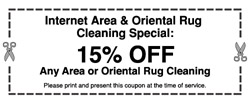 Area rug cleaning savings in NY- image