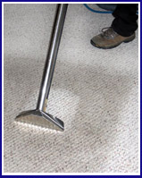 Water damaged carpet cleaing service NYC -image